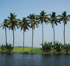 Alappuzha-destination